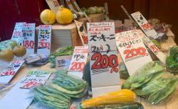 信州の新鮮野菜ずらり!週末だけのプチ市場「下北野菜マルシェ」