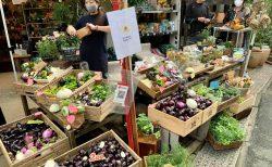 群馬の朝採れ野菜がたっぷり!ユー花園で新鮮野菜マルシェ