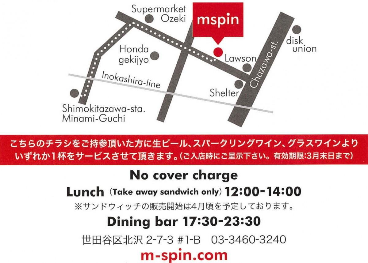 mspin3