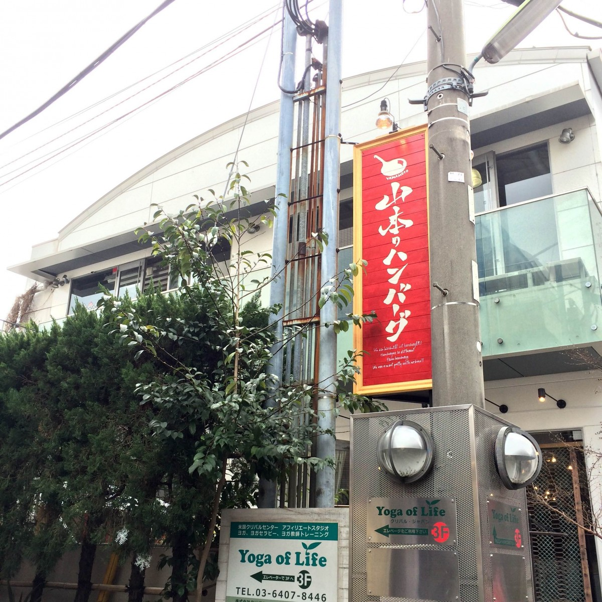 山本のハンバーグ (1)