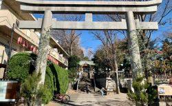 豊かな年を迎えるために、北澤八幡神社で詣で納めをしてきた