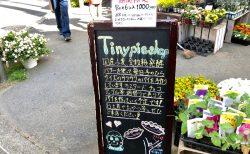 Tiny pie shopでオトクな期間限定キャンペーン実施中★