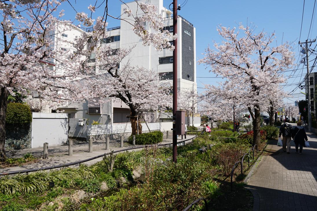 静かで便利、しかも好条件揃い!「代沢」に住んでみませんか?