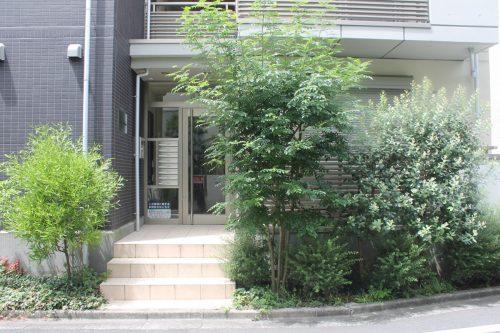 下北沢駅から5分、羽を伸ばせるゆとりの家「アンフィニグラン」103