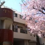 建物の前に桜の木が。春はベランダからお花見できます(外観)