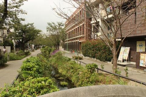 下北沢緑道1