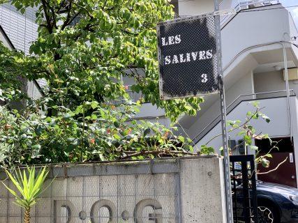 一番街の「ビストロ サリーブ」7月に移転再オープン