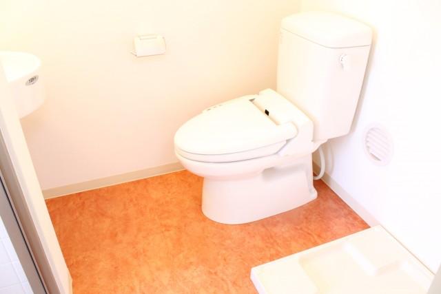 303: トイレと洗面台と洗濯機置き場