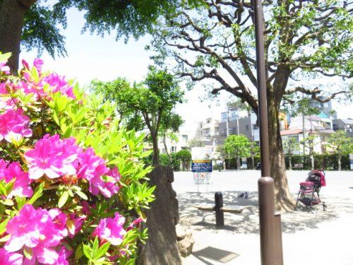 東北沢〜下北沢エリアに住みたい!周辺環境をご紹介